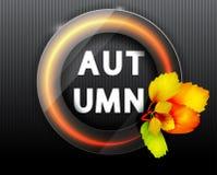 Blocco per grafici rotondo d'autunno Segno al neon Mazzo dei fogli di autunno Priorità bassa con i fogli di autunno Fotografia Stock