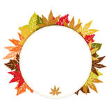 Blocco per grafici rotondo di autunno Fotografia Stock Libera da Diritti