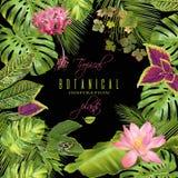 Blocco per grafici tropicale dei fiori Fotografia Stock Libera da Diritti