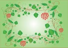 Blocco per grafici verde con i fogli e le bacche Fotografia Stock