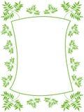 Blocco per grafici verde dei fogli Fotografia Stock