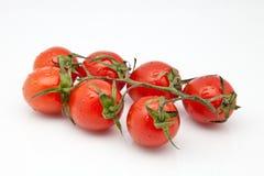 Block der Tomaten Lizenzfreie Stockfotografie