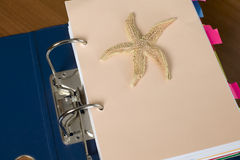 Block of documents with starfish. There is a block of documents and starfish Stock Photography