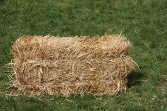 Block dry straw cube Stock Photography