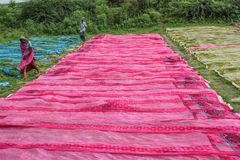 Block fabric Printing process 2 Royalty Free Stock Image