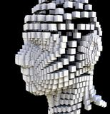 Block Head Stock Image