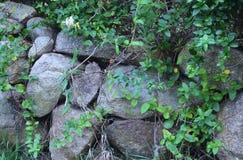 Block-Inselsteinwand Stockfoto
