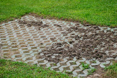 Block mit grünem Gras Stockbild