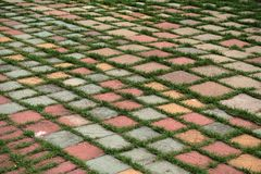 Block paved area with grass pattern of insertion Royalty Free Stock Images