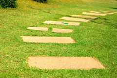 Block paved walking on the lawn. Royalty Free Stock Photos