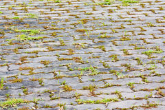 Block pavement Royalty Free Stock Image