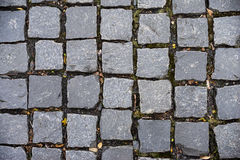 Block pavement square stone on the floor Stock Photography