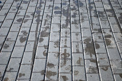 Block pavement texture. Stone block pavement with wet tracks Stock Photography