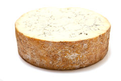 Block of stilton cheese Stock Image