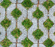 Block stone path in the park. Royalty Free Stock Photo