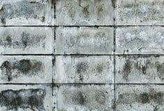 Block wal Lizenzfreies Stockfoto