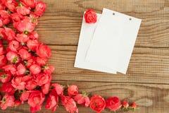 Blockanmerkungen und rote Rosen Stockfotografie