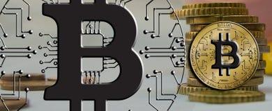 Blockchain Bitcoin - концепция бумажника bitcoin для оплаты всемирных виртуальных денег электронной Стоковые Изображения RF