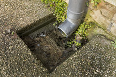 Blocked drain Royalty Free Stock Photo