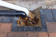 Blocked drain to house. Exterior house drain blocked with fallen leaves stock photography
