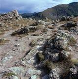 Blockfeld unterhalb des Murmeltier-Punktes, Rocky Mountain National Park, Colorado Stockfotografie