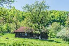 Blockhaus in den Karpaten Lizenzfreie Stockfotografie