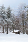 Blockhaus in einem schneebedeckten Wald Stockfoto