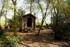 Blockhaus im Garten mit handgemachtem Garten der Leiter im Frühjahr Lizenzfreie Stockfotografie