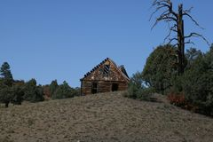 Blockhaus im Smokies umgeben durch Bäume Lizenzfreie Stockfotos