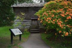 Blockhaus mit lodernder Azalee blauer Ridge Parkway, Virginia, USA Lizenzfreie Stockfotos
