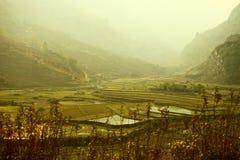 Blockhaus- und Reisfelder im Nebel, Thailand Lizenzfreies Stockfoto