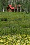 Blockhaushaus im Gebirgswald Stockfoto