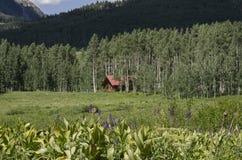 Blockhaushaus in Rocky Mountain-Wald Stockfotografie
