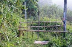 Blockierter Weg auf der Insel Lizenzfreies Stockbild