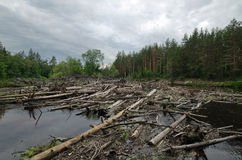 Blockierung auf dem Lukh-Fluss (Russland) Stockfotos