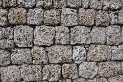 blockkorallvägg Fotografering för Bildbyråer