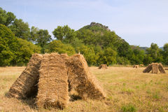 Blocks with hay in the fields Stock Photo