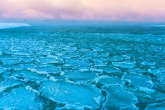 Blocks of ice on the coast of the frozen sea Royalty Free Stock Photos