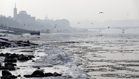 Blocks of ice floating on danube river in Budapest, Hungary Royalty Free Stock Photo