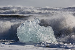 Blocks of ice from the glaciers break up and is washed ashore by Royalty Free Stock Images