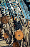 Sea ropes Stock Photo