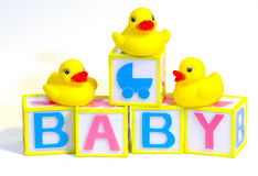 Blocks and Rubber Ducks stock photos