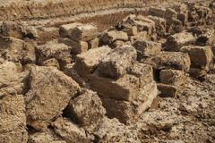 Blocks at peat field. Cut peat blocks are let to dry in field stock image