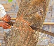 Blockwindenmann schneidet Holz Stockbilder