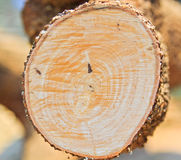 Blockwindenmann schneidet Holz Lizenzfreies Stockfoto