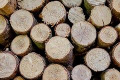 Blockwoods Lizenzfreie Stockfotos