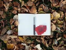 Blocnote op de achtergrond van de herfstbladeren Royalty-vrije Stock Foto