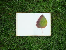Blocnote op groen gras Stock Fotografie