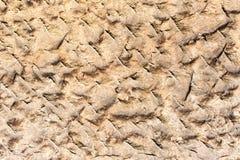 Bloco de arenito - detalhe 1 foto de stock