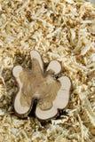 Bloco de madeira em microplaquetas Fotografia de Stock Royalty Free